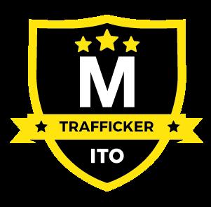 Instituto de Tráfico Online - Roberto Gamboa